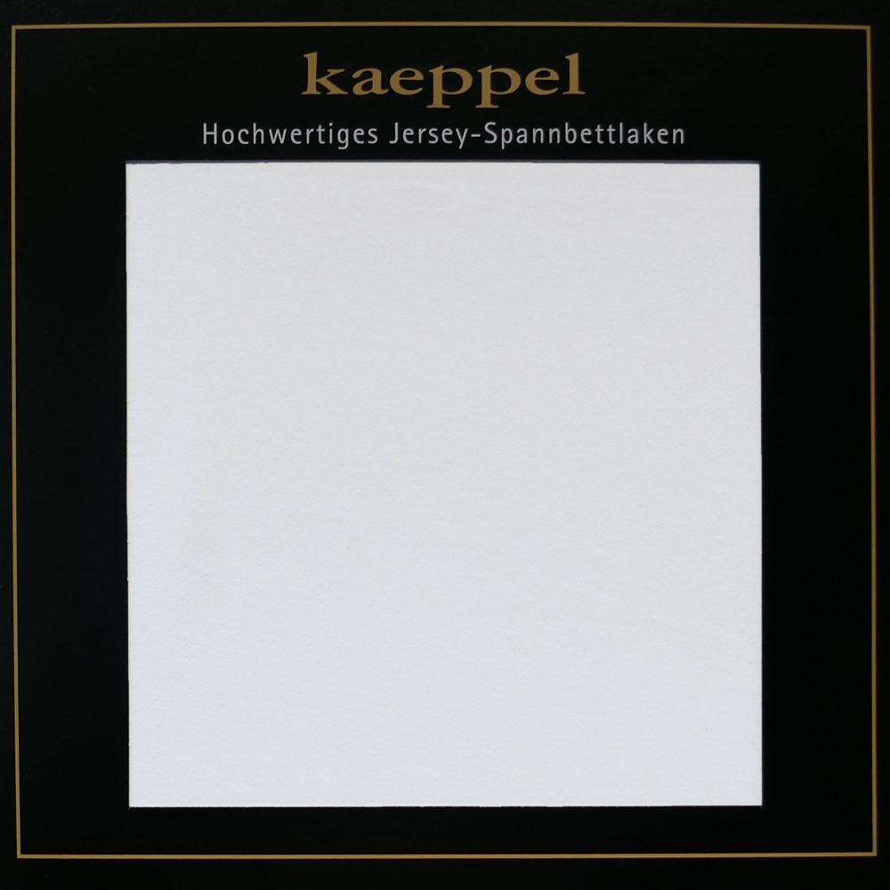 Jersey Spannbettlaken SILBER Hellgrau Baumwolle Kaeppel #1675 - 338
